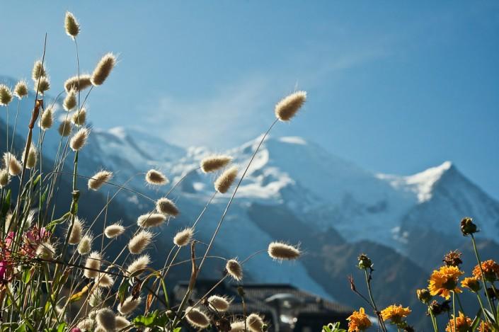 Laurent Jammes Photographe Paysage Toulouse Mont Blanc Alpes Chamonix